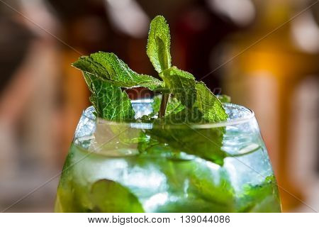 Mint in glass with drink. Green leaves on small branch. Alcoholic beverage served at party. Hugo cocktail with mineral water.