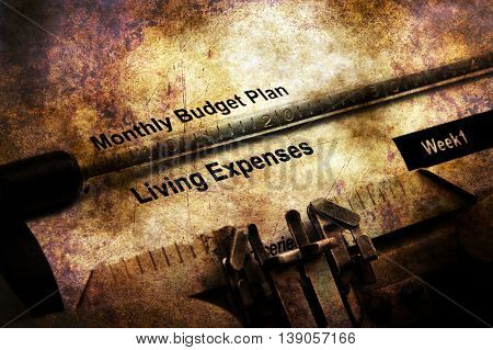 Monthly Budget Plan Living Expenses