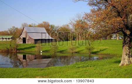 Kentucky farm