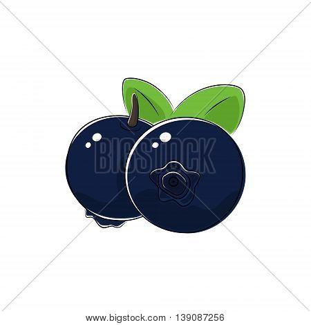 Black Berry Blueberries Isolated on White Background, Fruit Blueberries, Vector Illustration