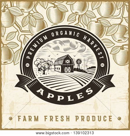 Vintage apple harvest label. Editable EPS10 vector illustration in retro woodcut style with clipping mask and transparency.