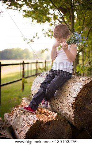 Adorable kid boy in jeans white t-shirt sitting on the old tree and holding forget me not flowers in his hand. Child with beautiful blue bouquet. Shy boy with bunch of flowers outdoors countryside.
