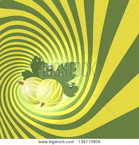 Striped spiral goosberry patisserie background. Goosberry fruit color. Goosberry spiral tunnel. Spiral background for cover design of goosberry fruit products. Vector Illustration.