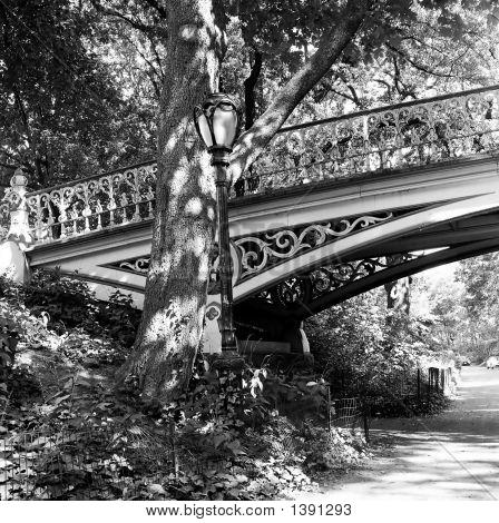 Steel Foot Bridge In Central Park