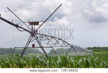 Agricultural irragation system watering a corn field