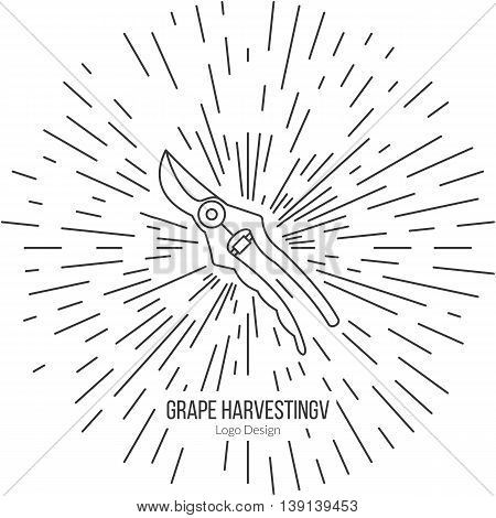 Grape picking trimming snips with star burst. Single logo in modern thin line style isolated on white background. Outline winery symbol. Simple mono linear pictogram. Stroke raster logotype template.