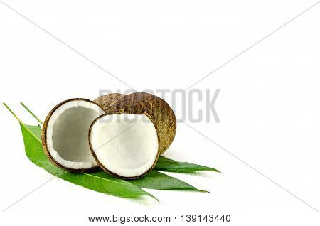 Cut Coconut Shell With Fresh Organic Coconut Kernel.