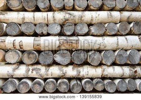 Background of old wood birch logs, wood background