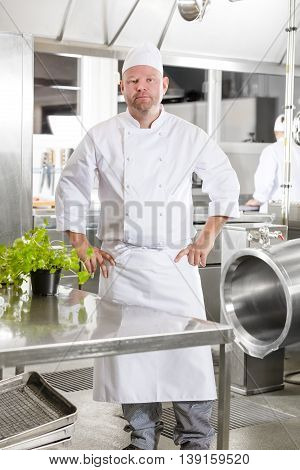 Portrait of a confindent and smiling male chef standing in the large kitchen with his hands on the hips. Assistant working in the background.