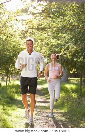 Middle Aged Couple Jogging In Park poster