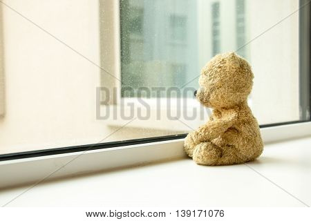 Bear is sitting very lonely by the window