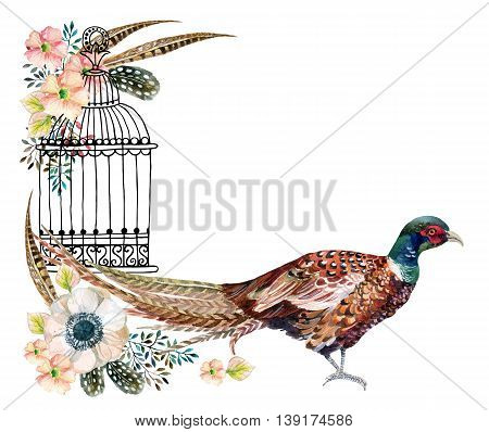 Watercolor Swinhoe pheasant card. Hand painted illustration with Anemones herbs feathers pheasant and bird cage