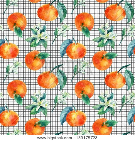Watercolor mandarine orange fruit with leaves and blossom seamless pattern on white background. Orange citrus tree. Mandarin bloom. Tangerine leaf flower in retro style. Hand painted illustration