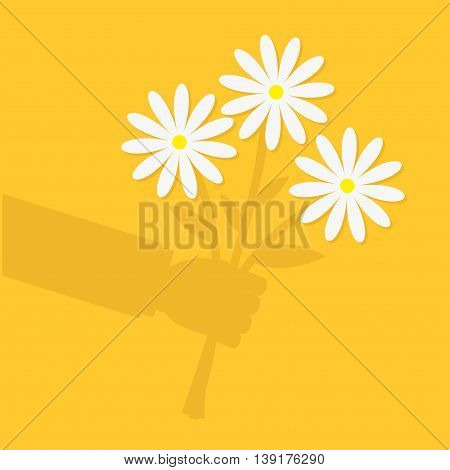 Businessman cartoon character shadow hand holding bunch bouquet of white daisy flowers. Greeting card. Yellow background. Flat material design. Vector illustration