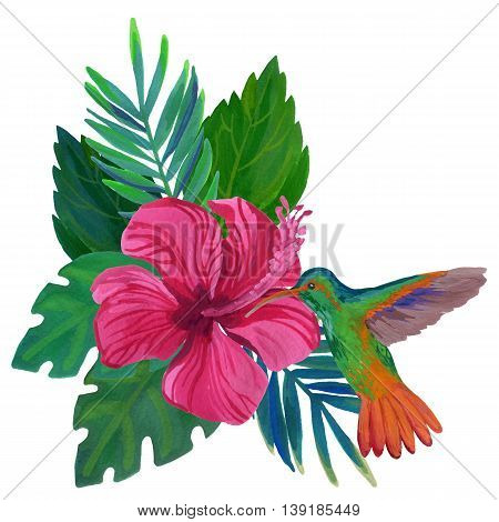 Watercolor humming bird with exotic flowers and leaves isolated on white background