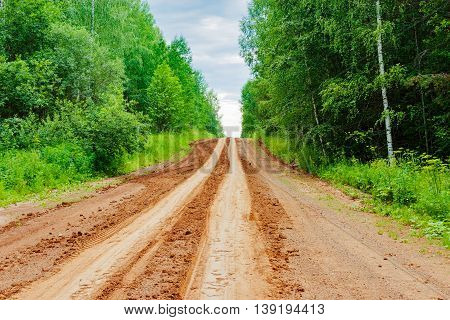 Dirt impassable road in the forest a summer day