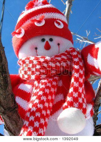 Adventuresome Snowman