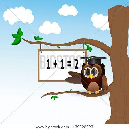 owl teaching above the tree with white borad