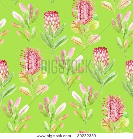 Seamless pattern with jungle flowers on green background