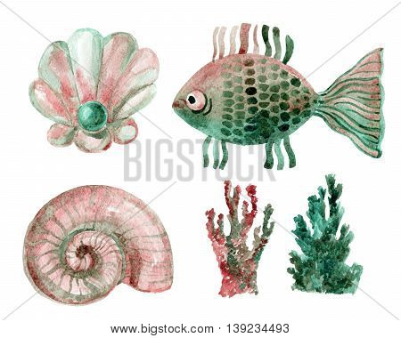 Watercolor marine set - shells coral and fish isolated on white background. Hand painted illustration
