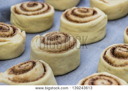 Beautiful and uncooked cinnamon buns with cinnamon