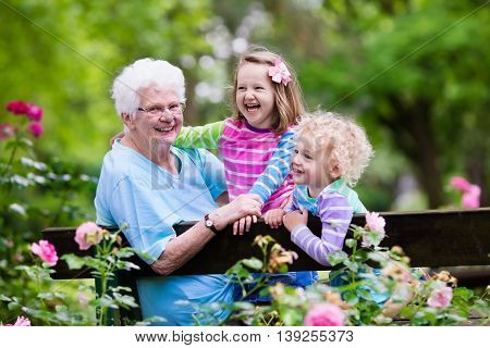 Happy senior lady playing with little boy and girl in blooming rose garden. Grandmother with grand children sitting on a bench in summer park with beautiful flowers. Kids gardening with grandparent. poster