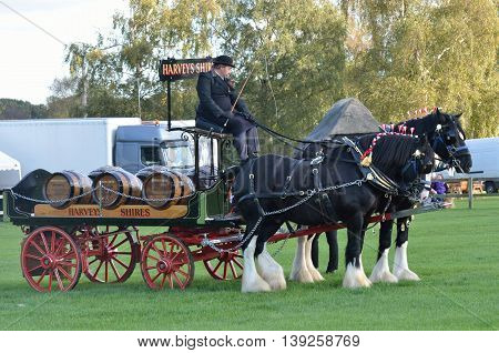 IPSWICH SUFFOLK UK 25 October 2014: East Anglia Equestrian Fair pair of heavy horses and cart