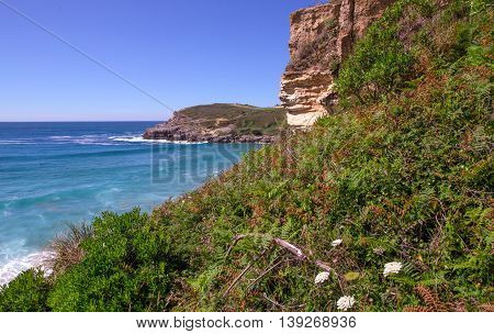Steep on an ocean coast in the summer. Northern Spain Cantabria Atalantichesky ocean. Summer the coast the blue ocean and the flat line of the horizon in the distance has grown with a grass and plants.