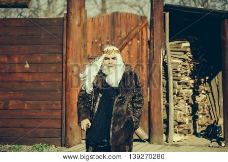 Druid old bearded man with long white hair and beard on serious face in fur coat and golden crown sunny day outdoor on wood background