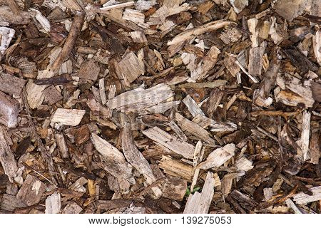 Wood chip background. Garden mulch made up of mulched wood and bark used to suppress weed growth
