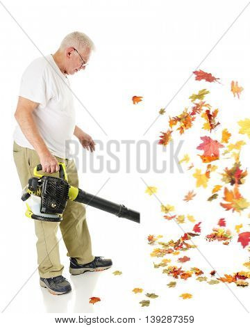 A senior man blowing autumn leaves with his gas driven leaf blower.  Motion blur on leaves.  On a white background.