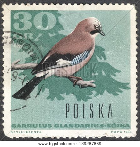 MOSCOW RUSSIA - CIRCA JANUARY 2016: a post stamp printed in POLAND shows a bird with the inscription