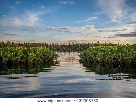 Kayaking around on the beautiful Cottonwood Lake in Wasilla, Alaska