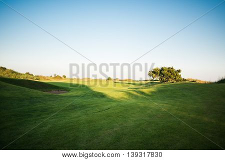 Beautiful golf course with sand trap and tree on background at sunset
