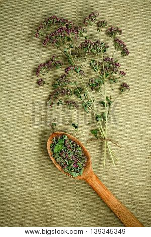 Oregano. Dried herbs for use in alternative medicine. Herbal medicine phytotherapy medicinal herbs. For the preparation of infusions decoctions tinctures powders ointments tea. Background green cloth