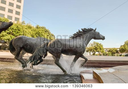 Irving, Texas mustang horse sculpture in urban park