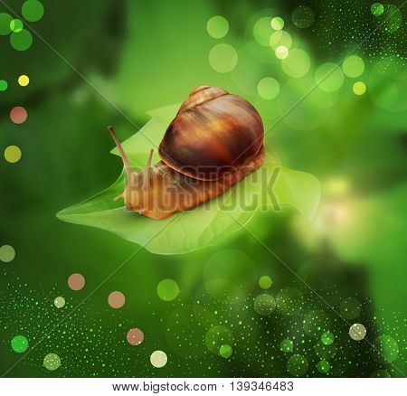 vector snail crawling on the green leaf