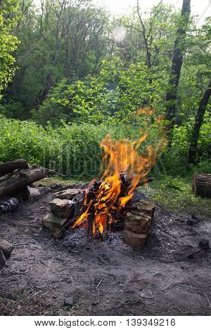 Bright fire bonfire in the spring forest.