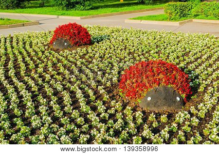 Summer Park Landscaping View - Flowerbeds With Landscaping Elements In Form Of Ladybirds Covered Wit
