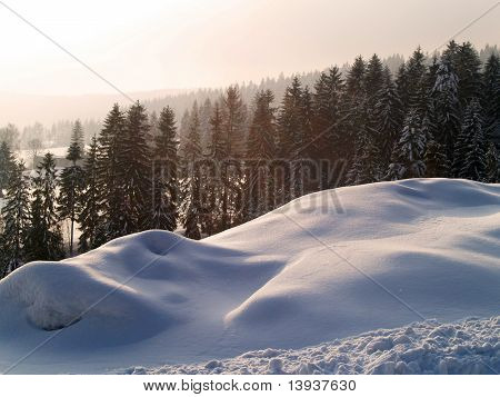 Winter gold landscape