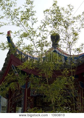 Bamboo And The Pavilion, Chinese Pleasance.