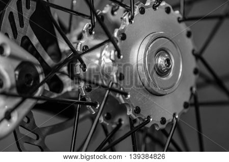Studio Shot With Bicycle Wheel. Black And White Close Up Detail With Bicycle Wheel. .