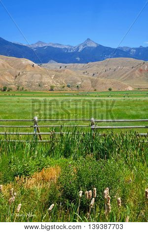 The Beaverhead Mountains provide a beautiful background for ranches near Salmon, Idaho.