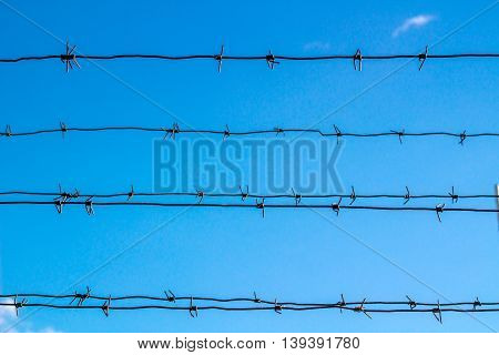 Barbed wire obstructs blue sky withou clouds