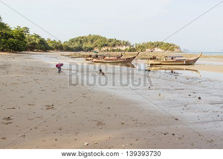 Ko Yao Noi , Phang Nga , Thailand - April 23, 2016: Peaceful low tide beach in the evening at Ko Yao Noi, Phang Nga, Thailand. It is well-known destination for tourists who love peace and nature.