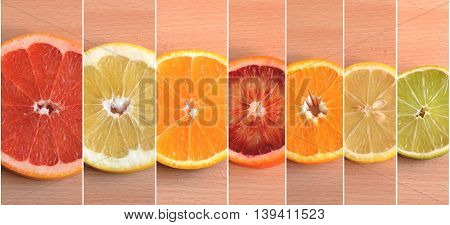 Slices of seven types of citrus organised by size with white dividing lines between them