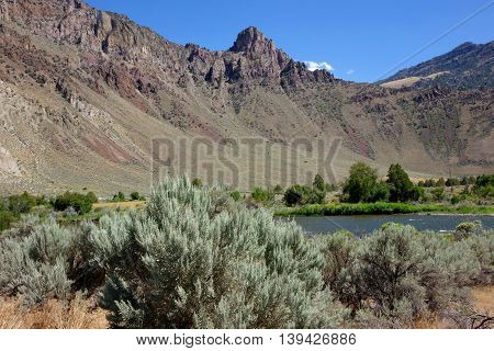 Rocky canyon walls, sagebrush and the Salmon River near Challis, Idaho.