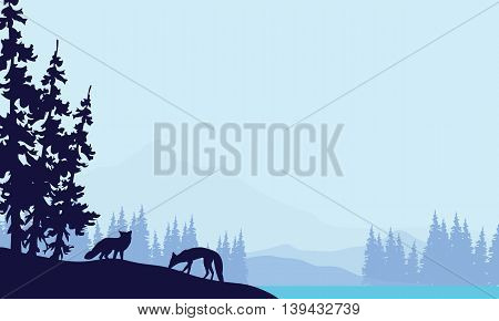 Blue backgrounds fox silhouettes landscape vector illustration