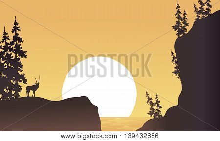 At afternoon antelope silhouette beatiful landscape illustration