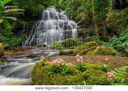 Mun-dang's Waterfall With Antirrhinum Flower Which Bloom Only Once A Year At 5Th Floor In Petchaboon